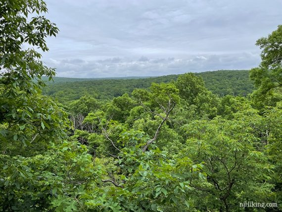 Viewpoint over green hills with low clouds in the sky