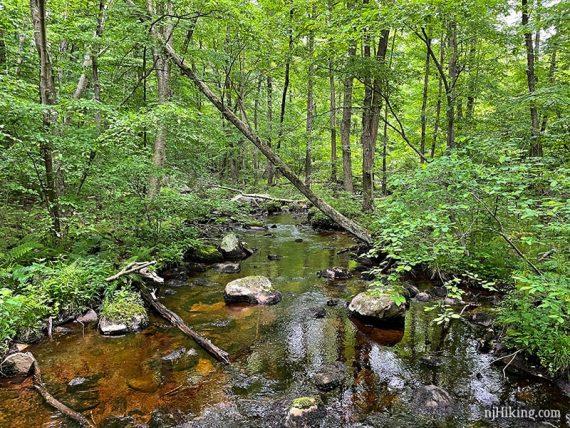 Weldon Brook