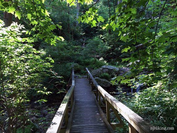 Bridge on Coppermine Trail