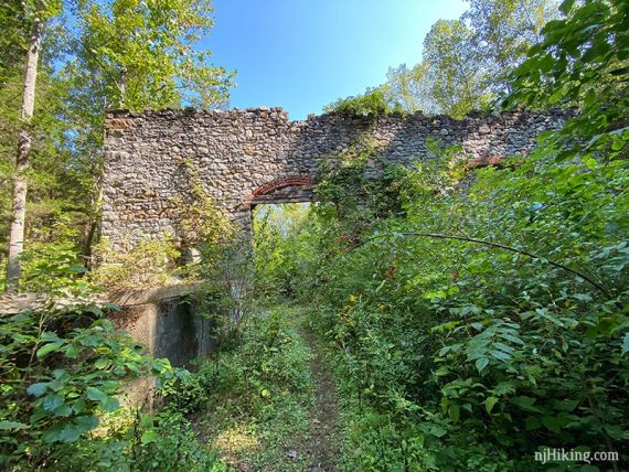 Path to stone wall with arches overgrown with foliage