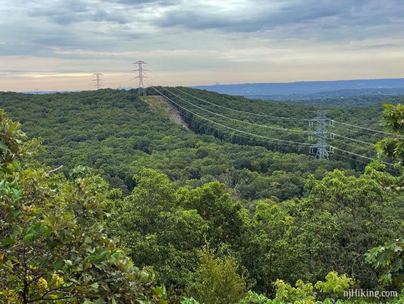 Green hills with a power line cut and NYC skyline