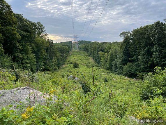 Power line cut through forest