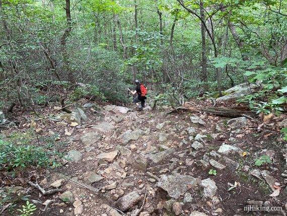 Rocky steep trail