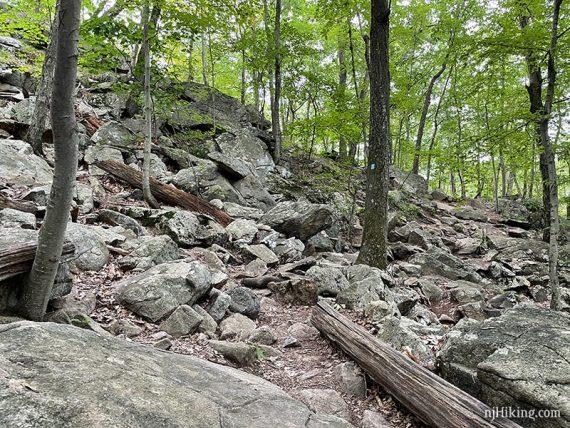 Very rocky trail