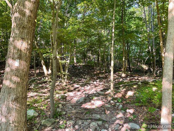 Rocky wide trail