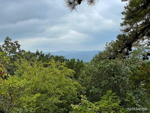 Hazy blue mountains in the background with green trees in the foreground