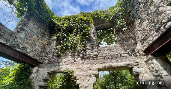 Stone wall with vegetation growing over
