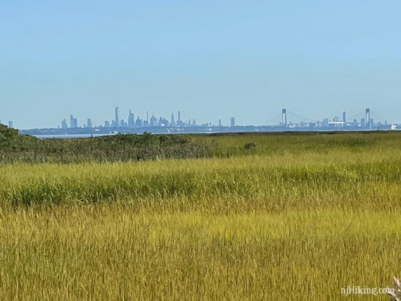 Zoom into the New York skyline with grassy marshland in the foreground