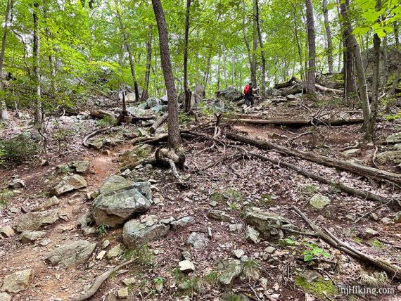 Hiker going uphill on a rocky trail