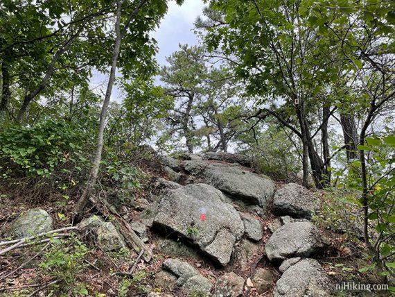 Very rocky trail with a red blaze
