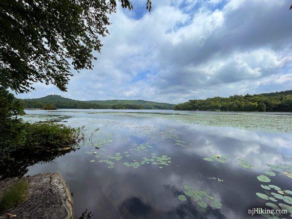 Lily pads on Ramapo Lake