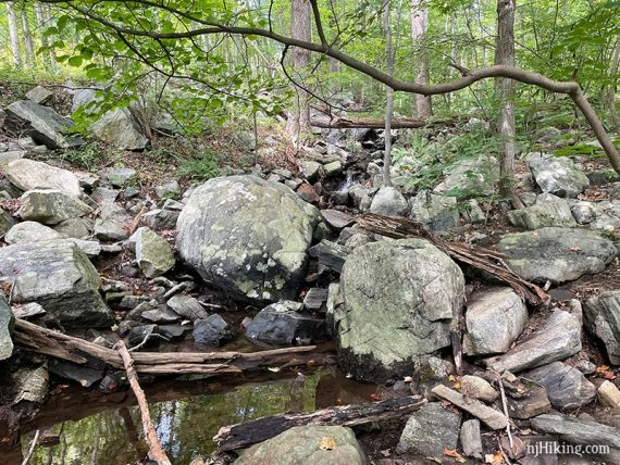 Stream crossing with two large round boulders