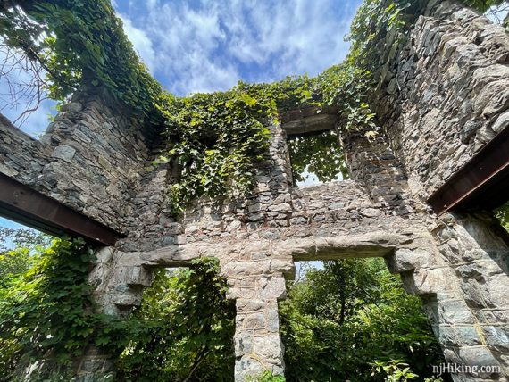 Vegetation hanging over the top of the castle walls