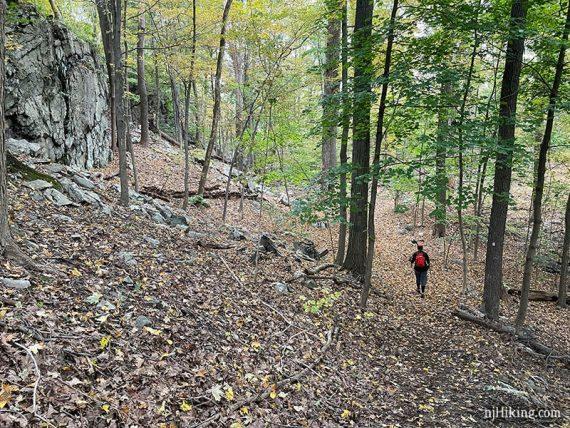 Hiker on a trail on a hillside near a rockface
