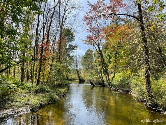 Fall foliage reflected in the Paulins Skill stream