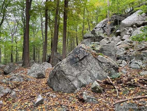 Large rock section next to a trail