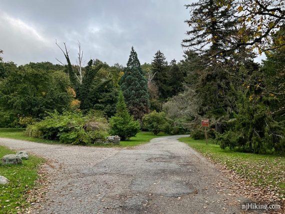 Paved path through gardens